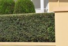 Adelaide Hills Privacy screens 30
